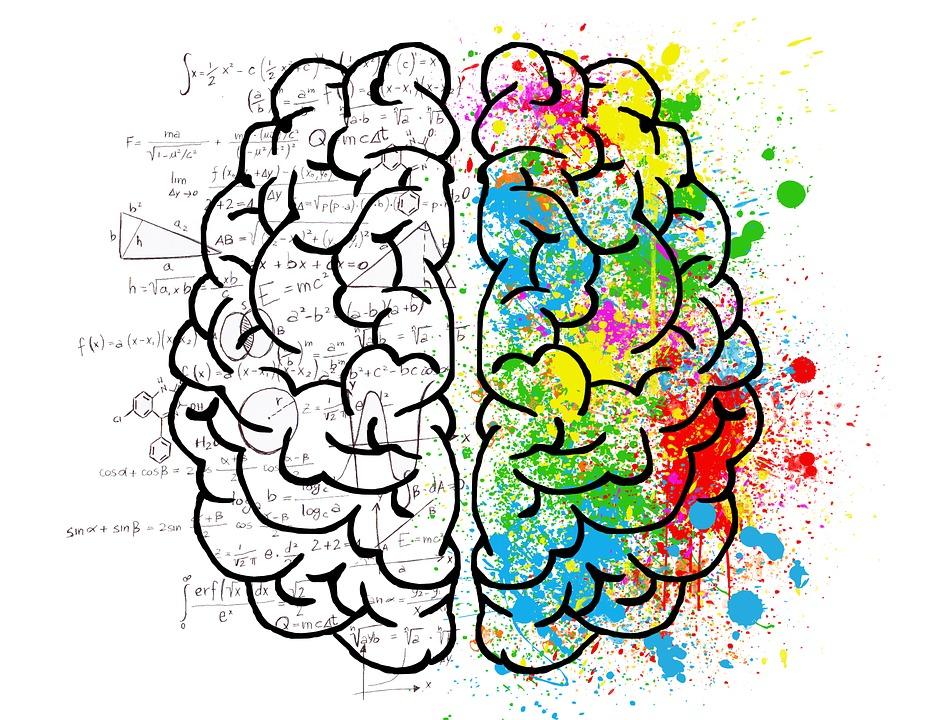 aplicatii creier