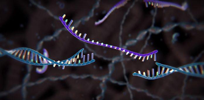 editarea genetică CRISPR